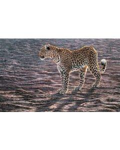 Ocavango Apparition