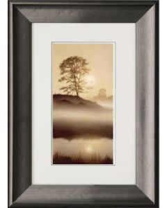 Suns Reflection (Low Stock)
