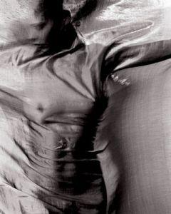Nude Behind Silk Series 2004
