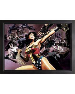 Wonder Woman: Defender Of Truth - Box Canvas
